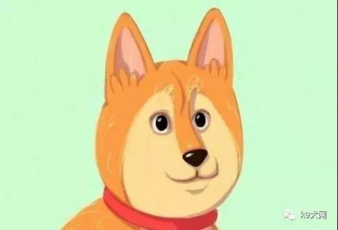狗狗打哈欠代表什么图片